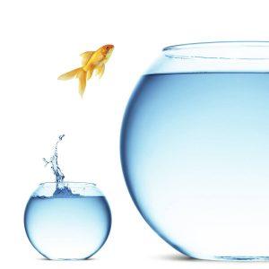 ترس از موفقیت